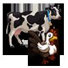 Icon-animale-pasari